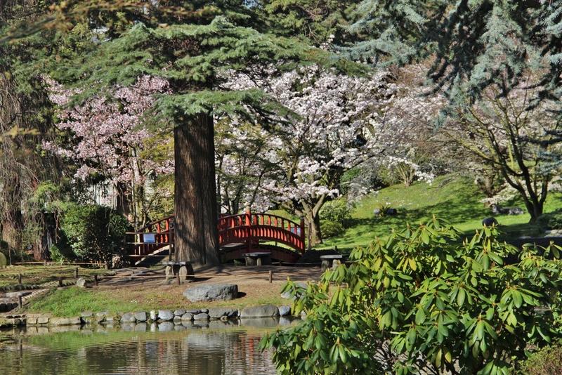 Le jardin japonais d 39 albert kahn my little road for Paysage jardin japonais