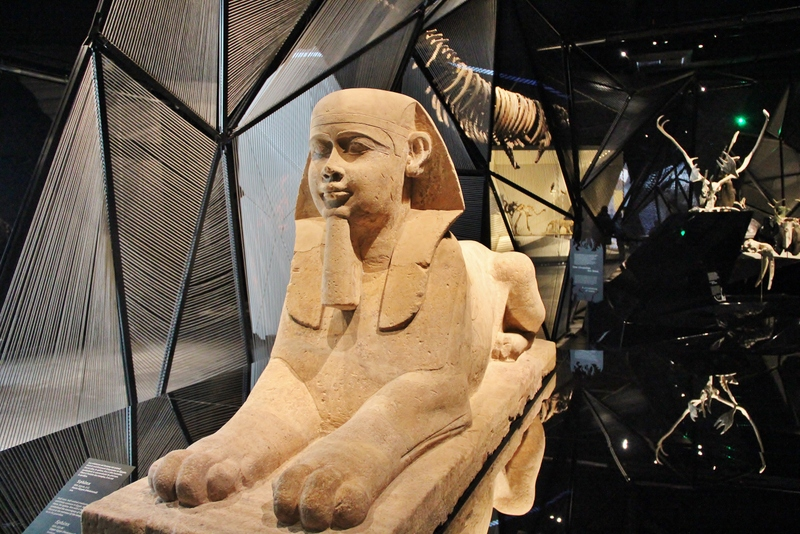 sphinx-musee-confluence-mylittleroad