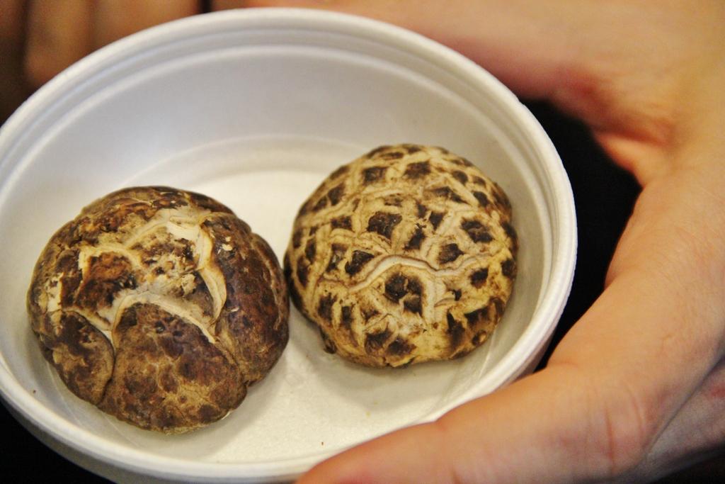 degustation-japon-champignon-mylittleroad