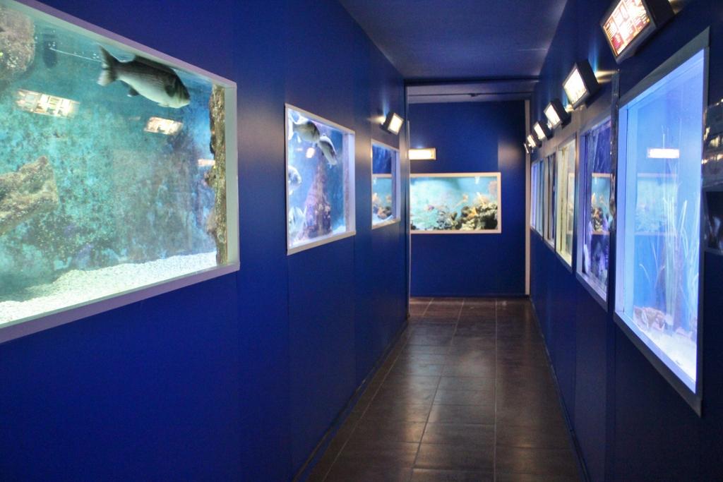 aquarim-embiez