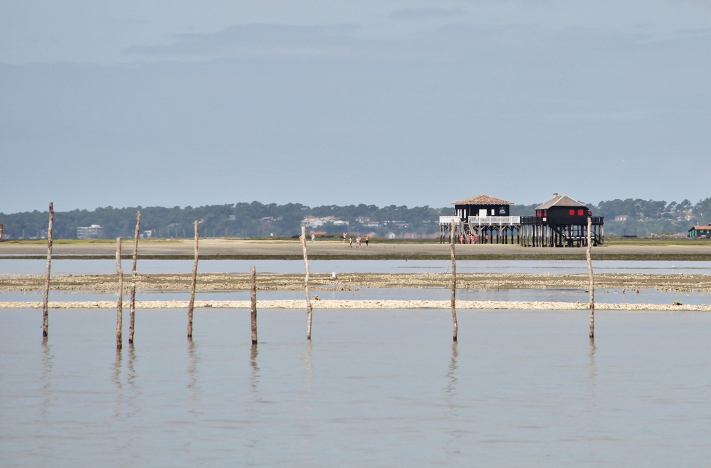 cabanes-tchanquees-2-arcachon