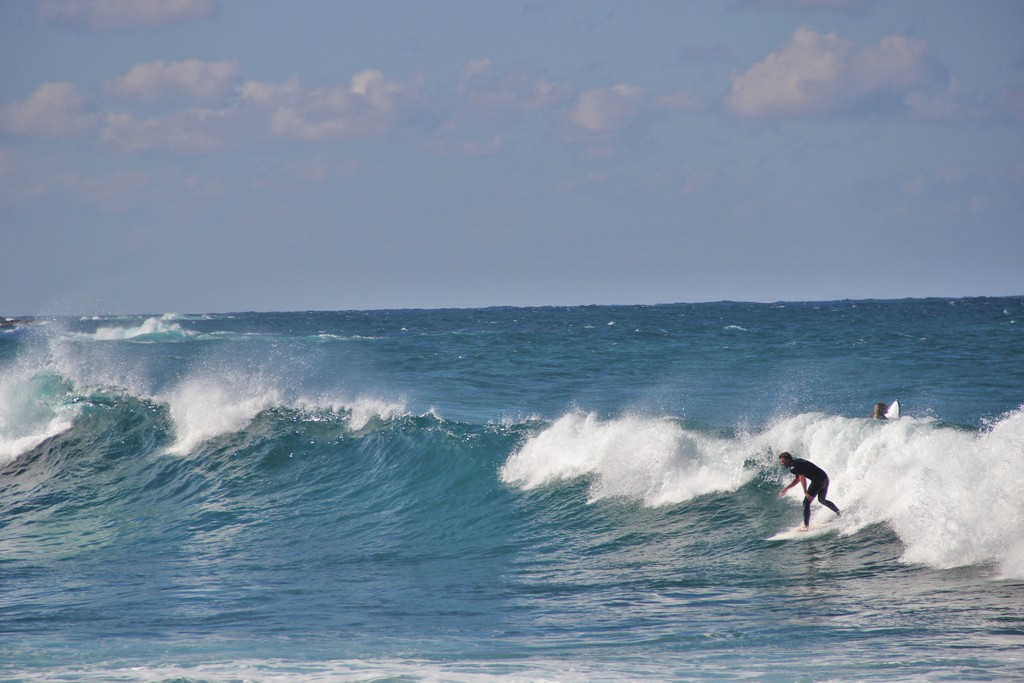 surfeur-beach-sydney